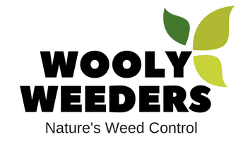Wooly Weeders